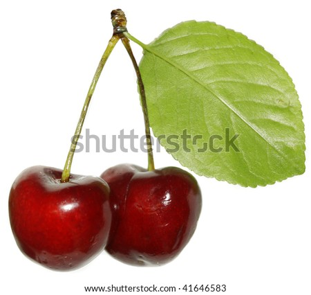 two cherries close up isolated