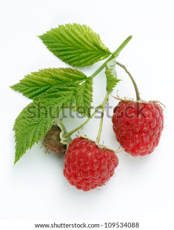 Two raspberries with leaves isolated on white background