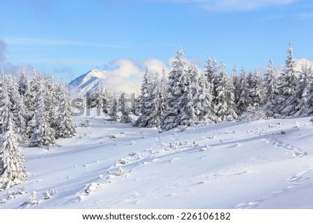 Unbelievable christmas holiday in the carpathian canyon covered with white lace and a clear blue sky and clouds.