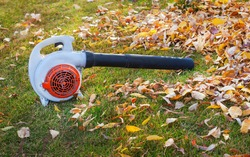 Vacuum cleaner for cleaning leaves on the lawn in the autumn park.