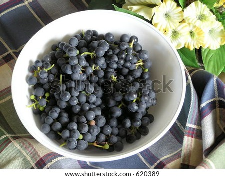 """Valiant"" grapes"