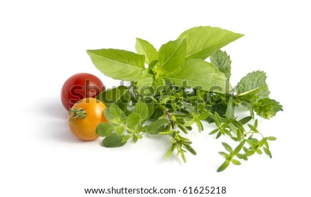 various herbs and cherry tomatoes isolated on white