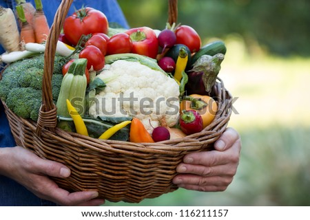 Vegetables in hands