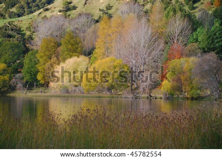View across lake to autumn colors