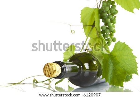 view of corked wine bottle with vine around it on white back - stock photo