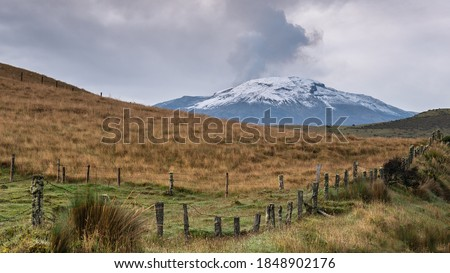 Photo of   view of the nevado del ruiz with grass in the foreground, close diagonally, and the nevado in the background.