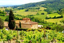 View through vineyards with stone house, Tuscany, Italy