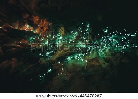 """""""Waipu Cave"""" Glowworm cave #445478287"""