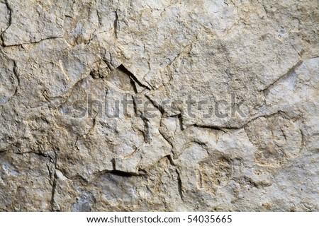 Ñ�Ñ?онÑ? wall texture