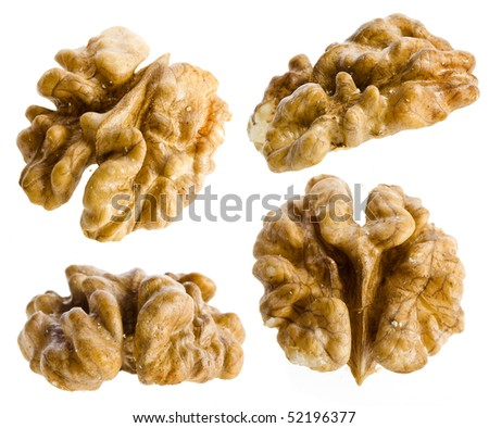 walnut kernel set close up isolated on white background