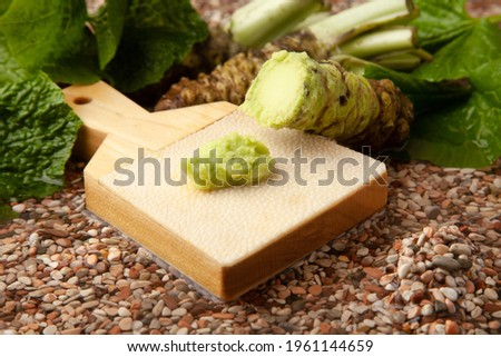 Wasabi grated with a wasabi grater Stock fotó ©