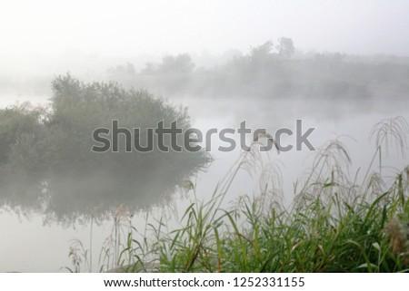 Wet fog of autumn morning #1252331155