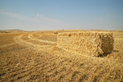 Wheat Straw Bales. Bales of wheat straw dot a country field in eastern Washington.