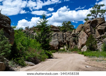 4-wheel drive trail through the Rocky Mountains of Colorado, near Buena Vista, USA #1441458338