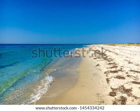 Wild beach on the island of Dzharylhach. Sunny day on the beach. The sea water is blue, clear, clear and clean. Clear sky on the sea. Seascape on a wild beach. #1454334242