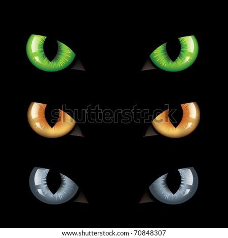 3 Wild Cat Eyes, On Black Background
