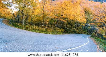 Winding road through fall foliage, Stowe, Vermont