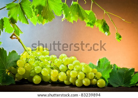 ,Wine, grapes,grapevine and wineglass,