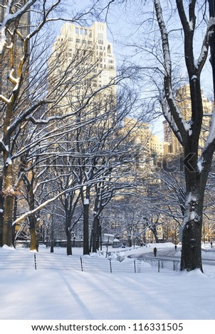 """""""Winter Park View"""" A view of Central Park and surrounding buildings after a fresh snowfall."""