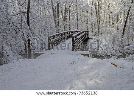 """Winter's Bridge"" - Scene after a snowstorm - Grand Rapids, Michigan, USA."