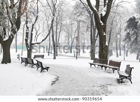 Winter scene at the park