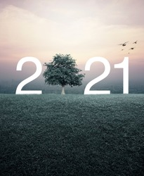 2021 with tree on green grass field over aerial view of cityscape at sunset, vintage style, Happy new year 2021 ecological concept