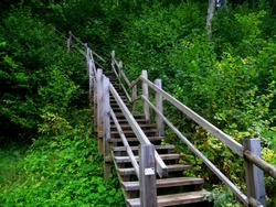 Wooden stairs going up to national park