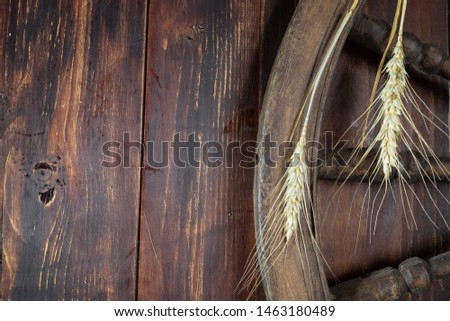 wooden surface, on the surface of the carriage wheel and two ears