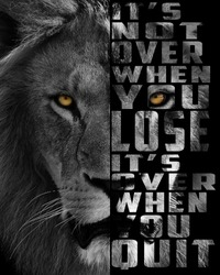 5000 x 4000 pixels a lion's head with inspiring text