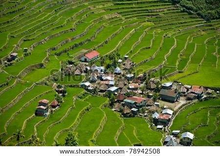 2000-year old Batad Rice Terraces, Ifugao Province, Philippines. UNESCO World Heritage