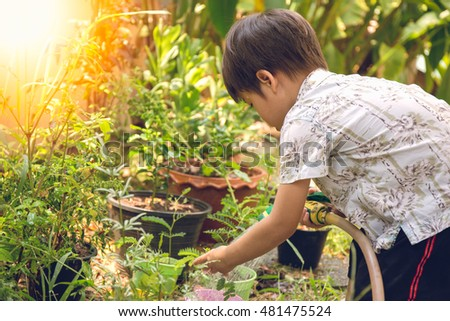 3 years Asian boy water a plant in his garden with flare and vintage color with copy space #481475524