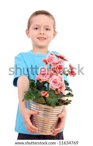 6 years old boy with potted flower - begonia isolated