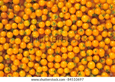 Yellow Cherry tomato Background. A cherry tomato is a smaller garden variety of tomato.