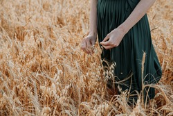 Young girl in green dress on grain field