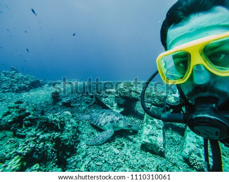 Stock Photo  Young tourist diving in the Gili island, Indonesia, many meters deep, discovering the wild life of the seabed near to a big turtle. Lifestyle and travel concept.