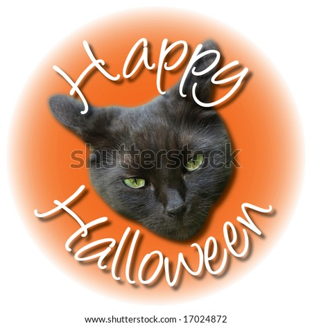 A angry black cat head with Happy Halloween type.
