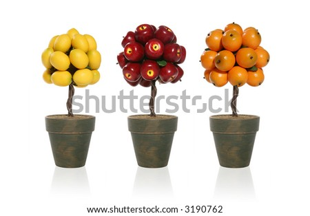 A apple, orange, and lemon tree isolated over white