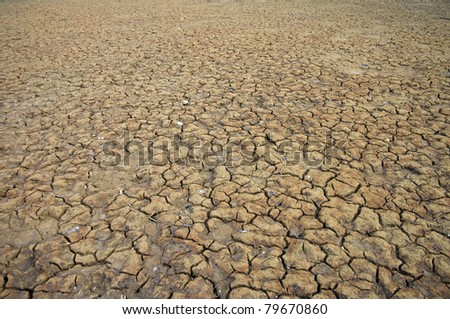 A area of dry land for a drought concept or metaphor.