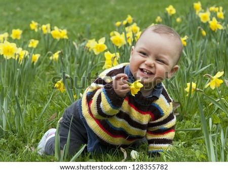 A baby boy crawling  amongst daffodil flowers in a spring garden or in a park.