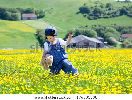 A baby girl in dungarees and baseball hat with a soft toy in her hands walking in the field full of buttercups