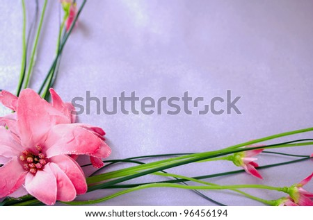 a background/frame made with pink flower