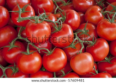 A background of fresh vine tomatoes for sale at a market