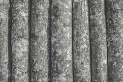 A background of round trunks of young trees that are tightly attached to each other to form a wall. The bark of the wood background creates a unique texture. Vertical orientation, pastel colors