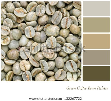A background of unroasted coffee beans in a colour palette with complimentary colour swatches. Part of a series of five images showing grades of roasted coffee.