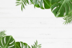 A background of white wood grain that refreshes summer with greening