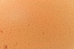 A background texture of an egg shell