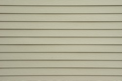 A background wall of tan shiplap siding.