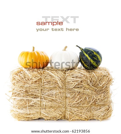 A bale of hay and pumpkins over white (with sample text)