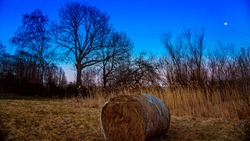 A bale of straw lying in a meadow at sunset, when the moon is in the sky. In the background silhouettes of trees in autumn. An idyllic image of a grass cycle illuminated by a night sky playing with co