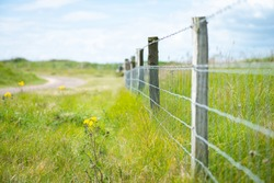 A barbed wire fence by a golf course, farmland to protect and keep live stock safe